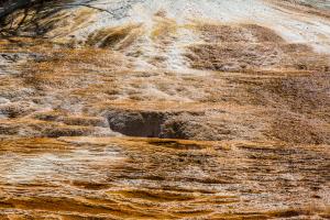 19.7. Mammoth Hot Springs - Algen, Bakterien, Ablagerungen