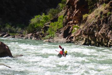 27.7. Kleine Rapids am Vormittag