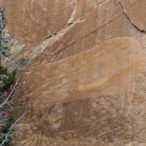 28.7. Big Island - Bison Petroglyph