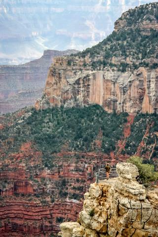 Grand Canyon: Bright Angel Trail.