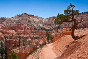 8.8. Bryce - Peek-a-Boo Trail