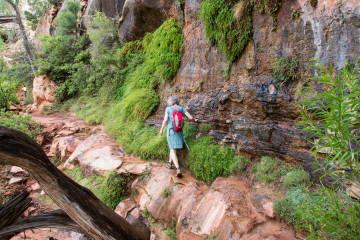 1.8. Zion - Canyon Overlook Trail