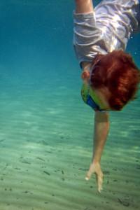 Tauchen und Unterwasserfotos mit der Ixus.