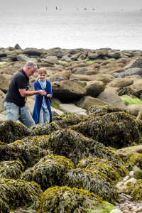 29.7.: Fossil Hunting