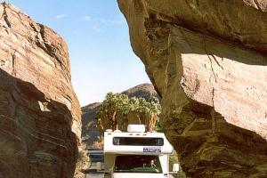 Ausflug zum Palm Canyon