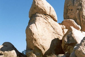 Joshua Tree NP: Jumbo Rock Campground.