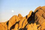 Kalifornien 2002 - Die Wüsten in Südkalifornien
