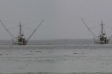 Zwei (!? ;-) Fisch-Trawler bei Mendocino.