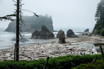 10.8.2017 - Olympic NP, Ruby Beach