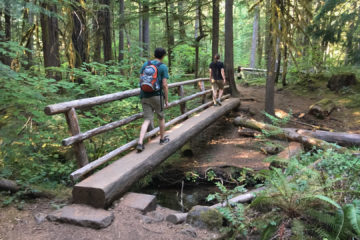 17.8.2017 - Paradise in Oregon, McKenzie River Trail