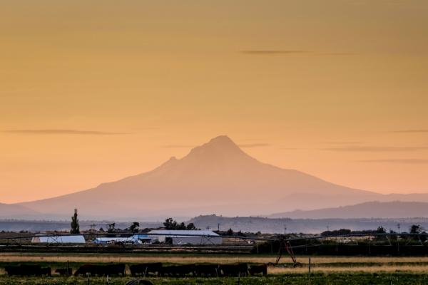 20.8.2017 - Anreise zur Eclipse. Mt.Hood, 90km Luftlinie