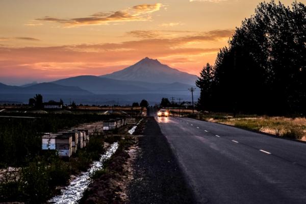 20.8.2017 - Anreise zur Eclipse. Mt.Jefferson, 50km Luftlinie