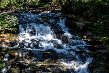 25.8.2017 - Mt.Rainier NP, Madcap Falls
