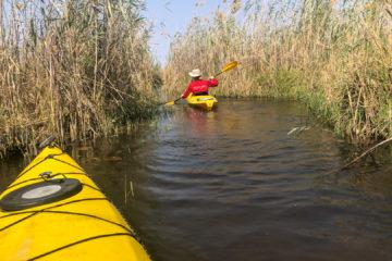 31.8.2019 - Kayak Tag 1 - enge Kanäle