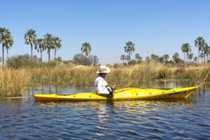 2.9.2019 - Kayak Tag 3, heute nur 1,5 std paddeln