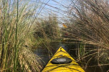3.9.2019 - Kayak Tag 4, Kurztrip mit dem Kayak