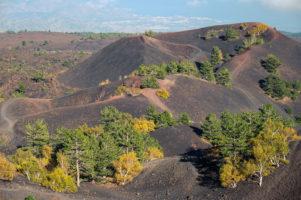 22.10.2020 - Wanderung Monte Sartorius